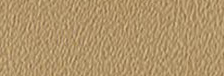 Beige Yellow 0603
