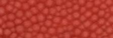 CHILI RED S-0113